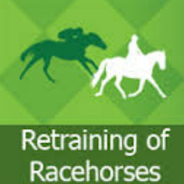 Retraining of Racehorses